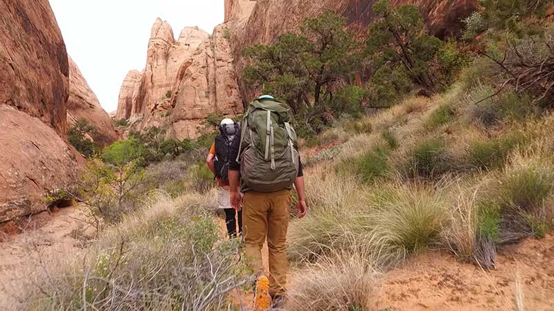 Hikers in Grandstaff Canyon